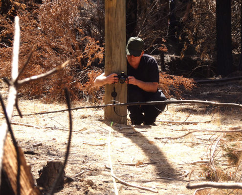 investigación de incendios forestales